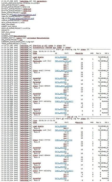 Execution View - text log
